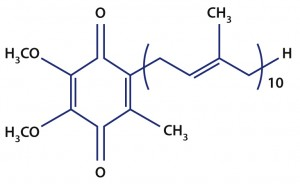 Coenzym Q10 Struktur