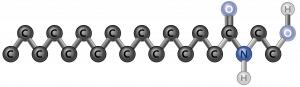 Strukturformel von Palmitoylethanolamid