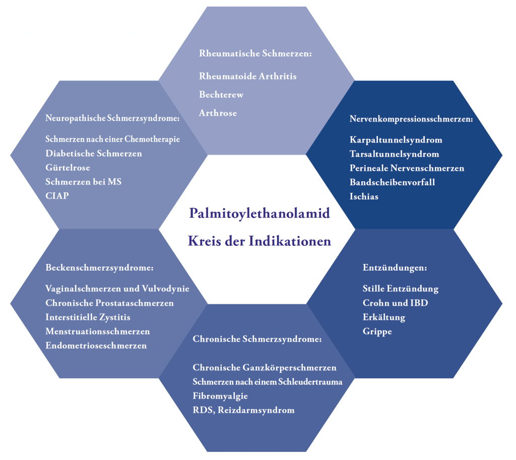 Indikationen für Palmitoylethanolamid