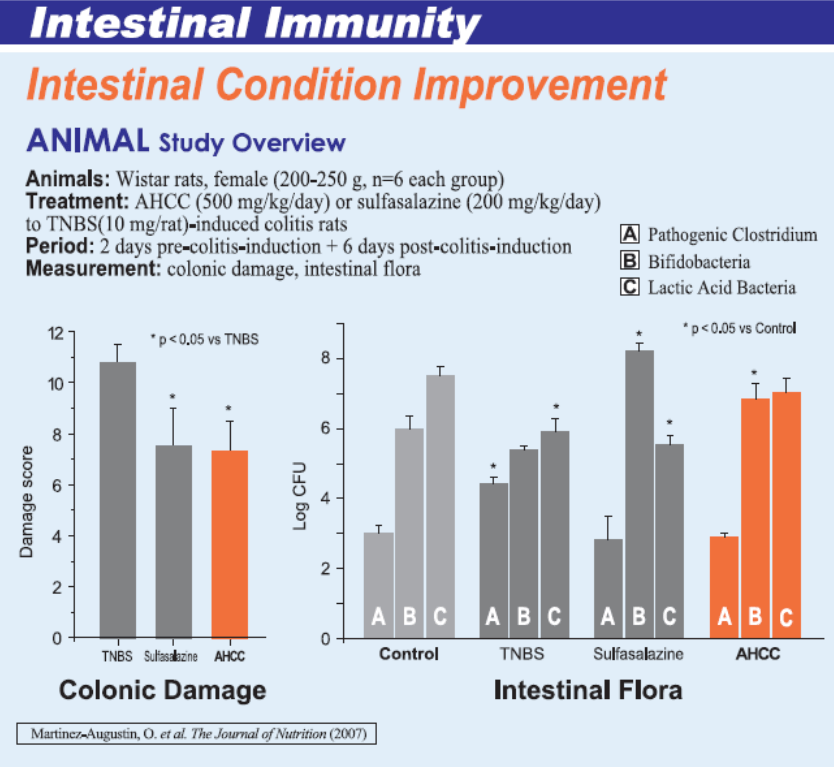 AHCC und intestinale Immunität