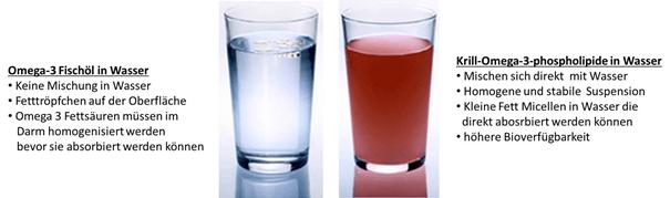 Fischöl und Krillöl im Wasser