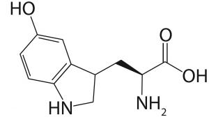 Molekularstruktur von 5-HTP