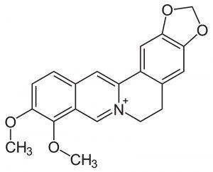 berberin-struktur