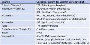 Abbildung 1: B-Vitamine und ihre coenzymatische Form