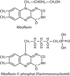Abbildung 7: Strukturformeln von Riboflavin und der aktiven Coenzym-Form Riboflavin-5'-phosphat (FMN)